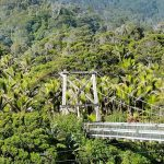Heaphy river suspension bridge